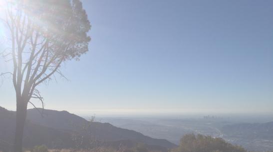 Screen shot 2014-02-17 at 5.37.57 PM